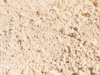 Nepean Paving Sand - Per Scoop - Rodgers Building and Landscaping Supplies