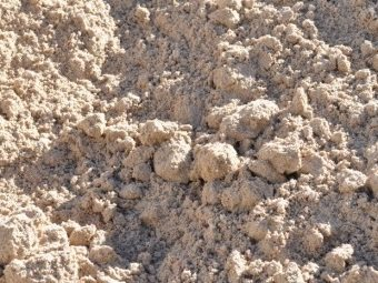 Brickie Sand (White) - Per Scoop - Rodgers Building and Landscaping Supplies